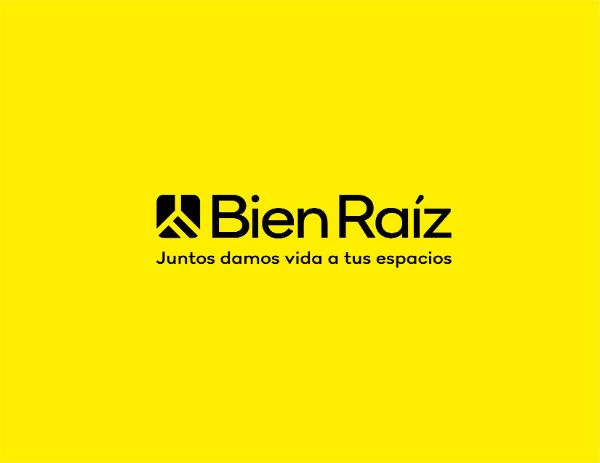 Bien Raíz Logo